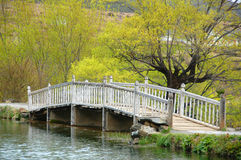 White bridge in Lijiang. Nature view and bridge of Lijiang Royalty Free Stock Photo