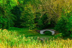 White Bridge over Small Green Pond in Park Royalty Free Stock Image