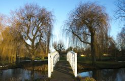 White bridge over water in St Neots, Cambridgeshire with willow trees in background. White bridge over water at St Neots Riverside with willow trees in Stock Images