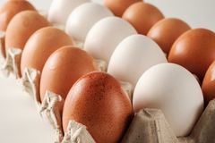 White and brown chicken eggs. Stock Photos