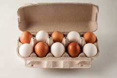 White and brown chicken eggs. Stock Images