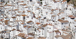White and Brown Concrete Houses during Daytime Stock Images