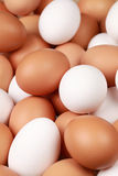 White and brown eggs Royalty Free Stock Photo
