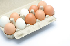 White and brown eggs in a carton package Royalty Free Stock Images