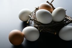 White and brown eggs in nest from branches on black background. White and brown eggs in a nest from branches on black background Royalty Free Stock Photo