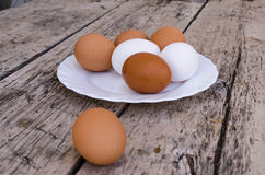 White and brown eggs plate Stock Photos