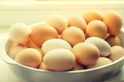 White and brown fresh chicken eggs in a plate. concept of easter. Cooking ingredients Royalty Free Stock Photos