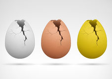 White brown and golden cracked egg collection Royalty Free Stock Image