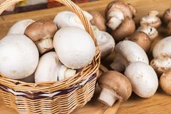 White and brown mushrooms in a basket Stock Images