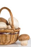 White and brown mushrooms in a wicker basket Royalty Free Stock Photos