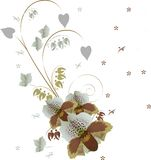 White and brown orchid bouquet Royalty Free Stock Image