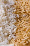 White and brown rice Royalty Free Stock Photo