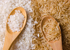 White and brown rice. Natural white and brown long rice in wood spoons Royalty Free Stock Image