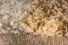 White and Brown Rice Closeup Stock Photography