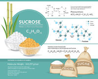 White and brown sugar cubes in bowls. Structural chemical formula and model of sucrose. Vector illustration. White and brown sugar cubes in bowls. Structural Stock Images
