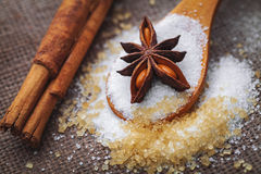 White and brown sugar Royalty Free Stock Image