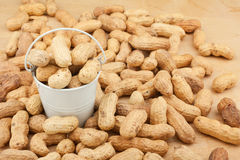 White bucket with  dried peanuts  on the wooden floor Stock Photos