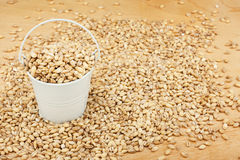 White bucket with pearl barley on the wooden floor Stock Images