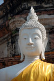 White Buddha. Head in Ayuthaya, Thailand Royalty Free Stock Images