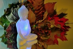 White buddha in front of colourfull Autumn leafs Royalty Free Stock Photo