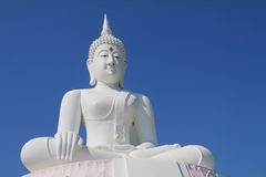 White buddha statue Royalty Free Stock Images