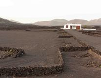 White building and geria vineyard with mountains in background. A white building in a vineyard in la geria, lanzarote, canary island. the typical lava black Stock Images