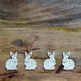 White bunnies on wooden background copyspace. White esater bunnies lined up at the bottom of wooden copyspace, facing opposite directions, in pairs - easter Royalty Free Stock Photo