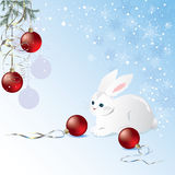 White bunny. And red christmas balls Royalty Free Stock Images