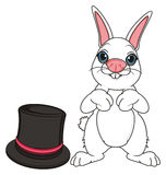 White bunny and large hat Royalty Free Stock Images