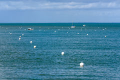White buoys and boats Royalty Free Stock Image