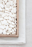 White butter beans Royalty Free Stock Photo