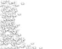 White butterfly border Royalty Free Stock Photos