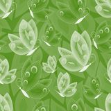 White butterfly outline elements on green background. Royalty Free Stock Photos