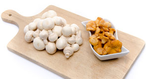 White button and chanterelle mushrooms on a wooden board Stock Photography