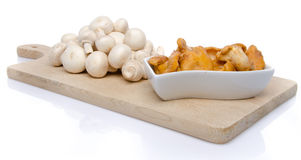 White button and chanterelle mushrooms on a wooden board Stock Photos