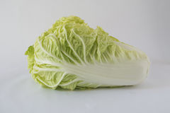 White cabbage. A White cabbage on white stock image