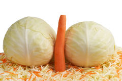 White Cabbage and Carrots. Royalty Free Stock Photo