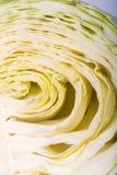 White  cabbage Royalty Free Stock Photo