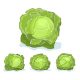 White cabbage vegetable on a white background Stock Photo