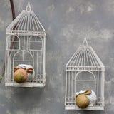 White cage Stock Image