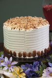 White cake with toasted cocunut topping Royalty Free Stock Image