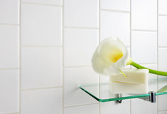 White calla Royalty Free Stock Image
