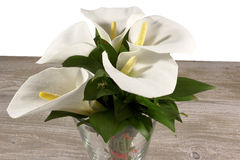 White calla lilies in the vase on the wooden background Royalty Free Stock Photography
