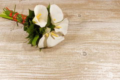 White calla lilies on the wooden background Stock Photos