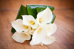 White Calla Lily Wedding Flower Bouquet. On timber background Stock Image