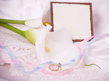 White callas with banner add and wedding golden ri. Beautiful white callas with banner add and wedding golden rings Stock Images