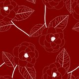 White Camellia Flower on Red Background. Vector Illustration. Royalty Free Stock Photos
