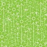 White camomile flowers seamless pattern. White camomile flowers of seamless pattern Royalty Free Stock Photo