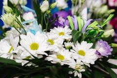 White camomiles, wedding decoration Stock Photo