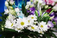 White camomiles, wedding decoration Royalty Free Stock Photography